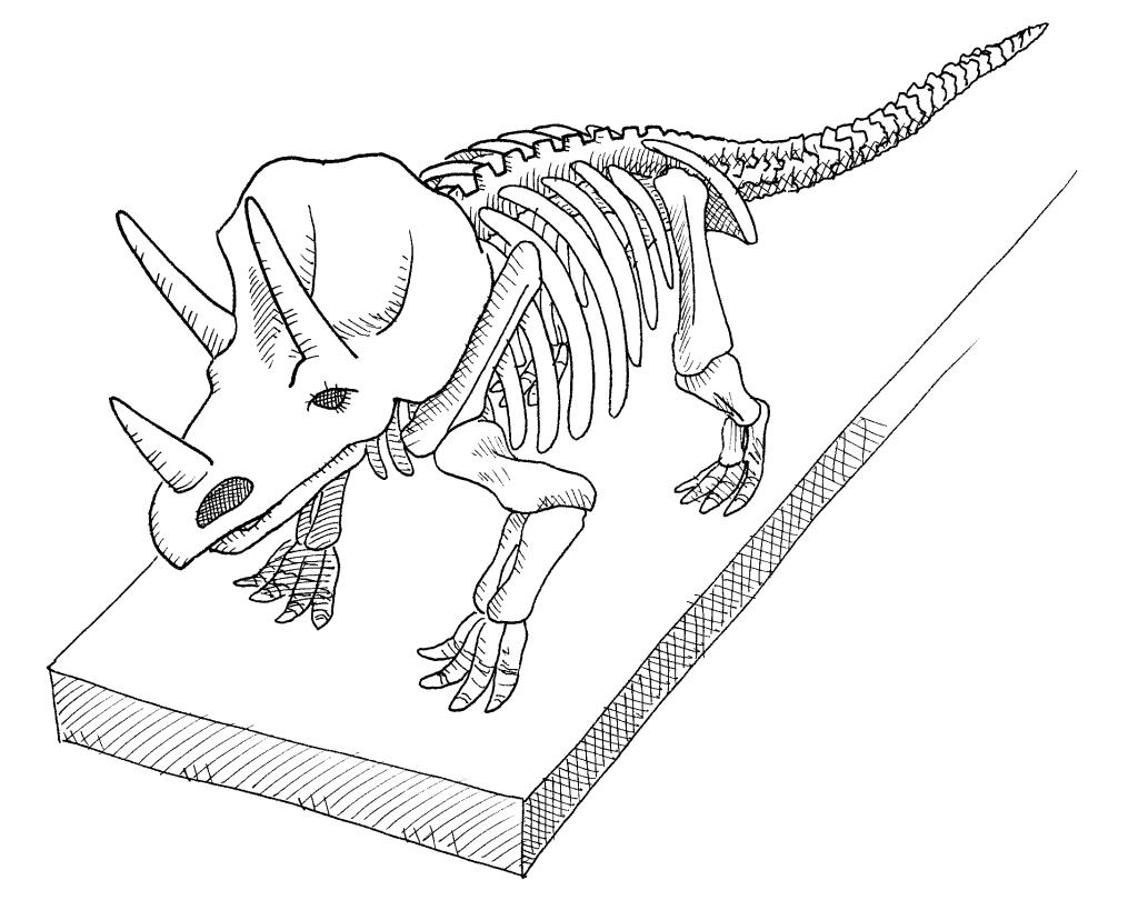 triceraptor01