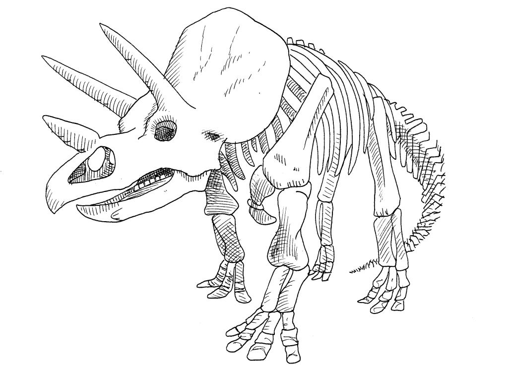 triceraptor02