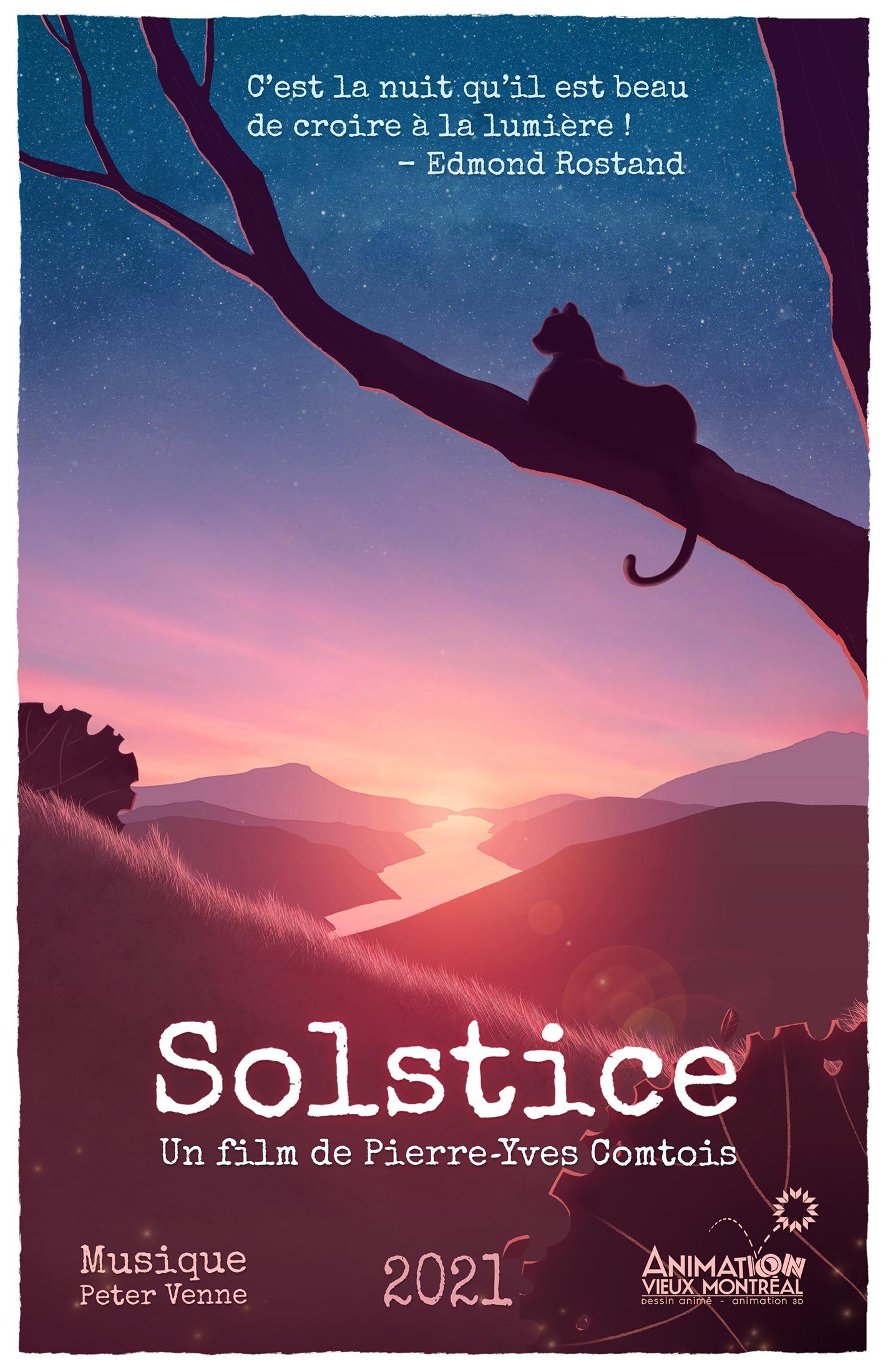 Affiche du film Solstice